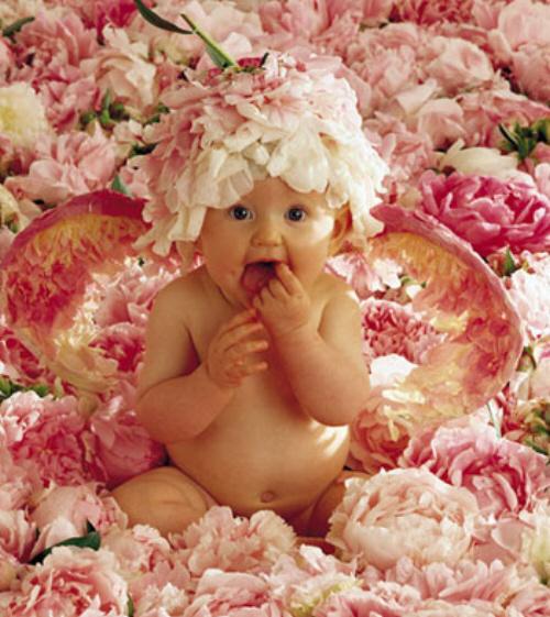 http://www.charla.ru/uploads/images/0/5/2/1/10/748a45988a.jpg