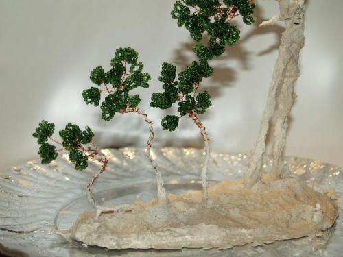 Теперь вы знаете, как сделать денежное дерево своими руками.